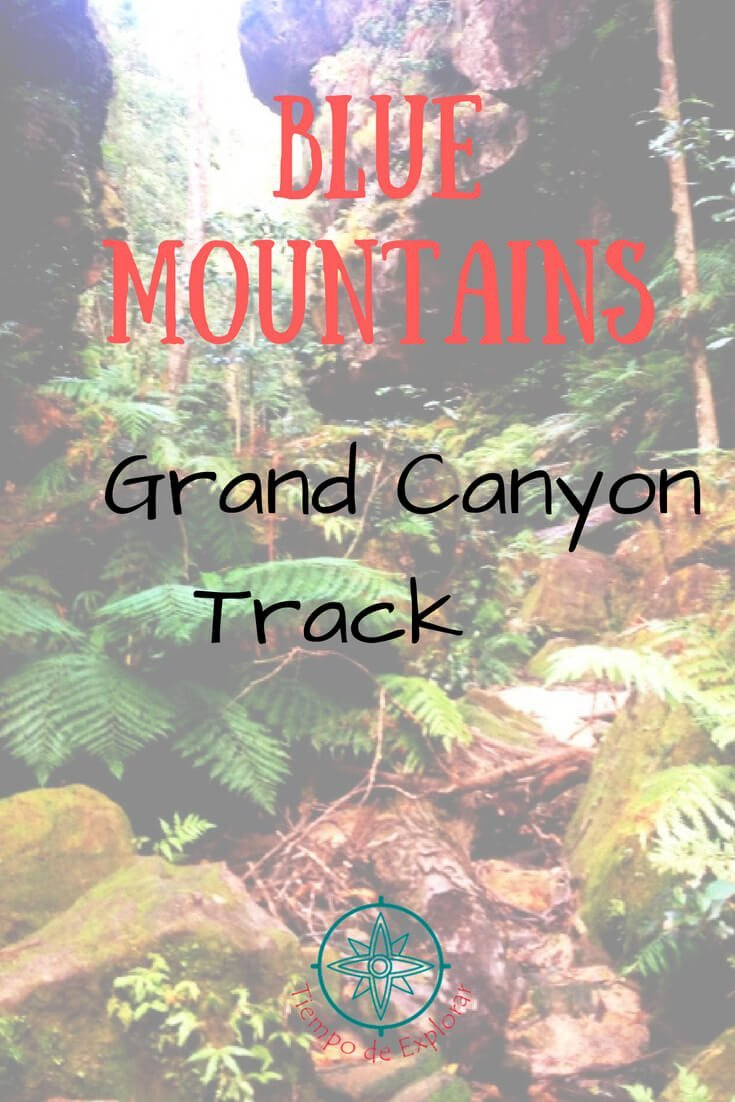 Grand Canyon Track Blue Mountains