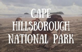 Cape Hillsborough National Park