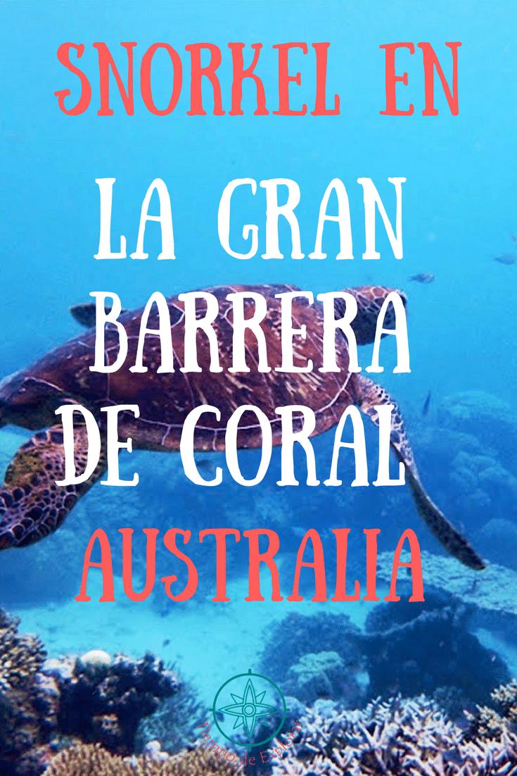 Pinterest snorkel en la Gran Barrera de Coral de Australia