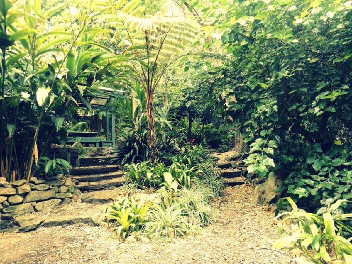 Parques y jardines. Qué hacer en Sydney