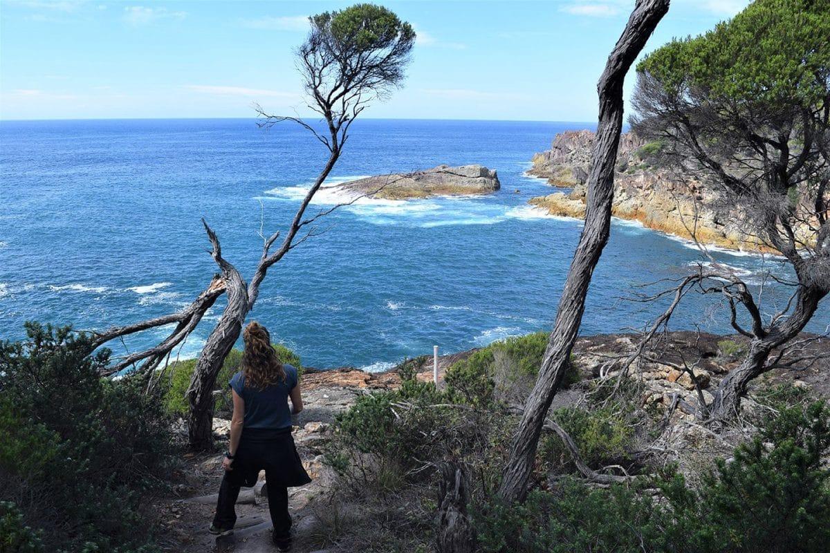 Sendero Kangarutha, Sapphire Coast, NSW, Australia @tiempodexplorar