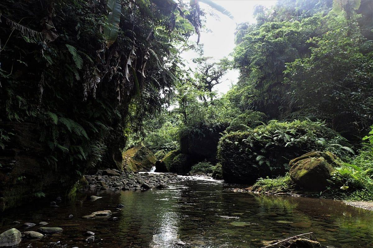 Millenium Cave Tour, Espiritu Santo, Vanuatu
