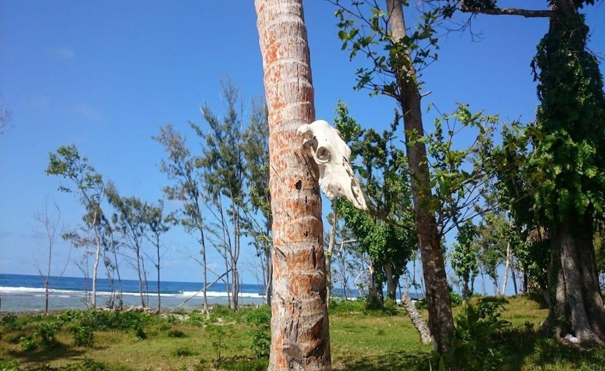 Sara Beach, Isla de Efate, Guia para viajar a Vanuatu
