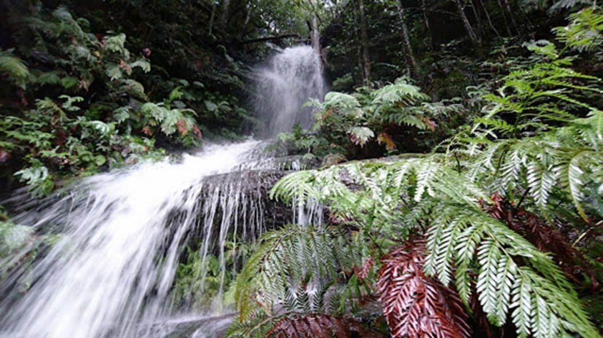waterfall blue mountains nsw australia