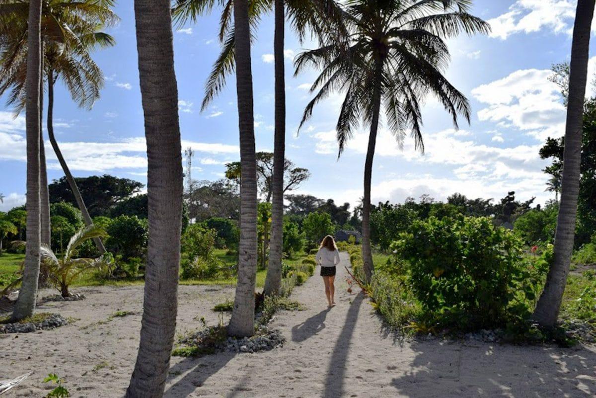 Alofa hotel Tanna Vanuatu garden