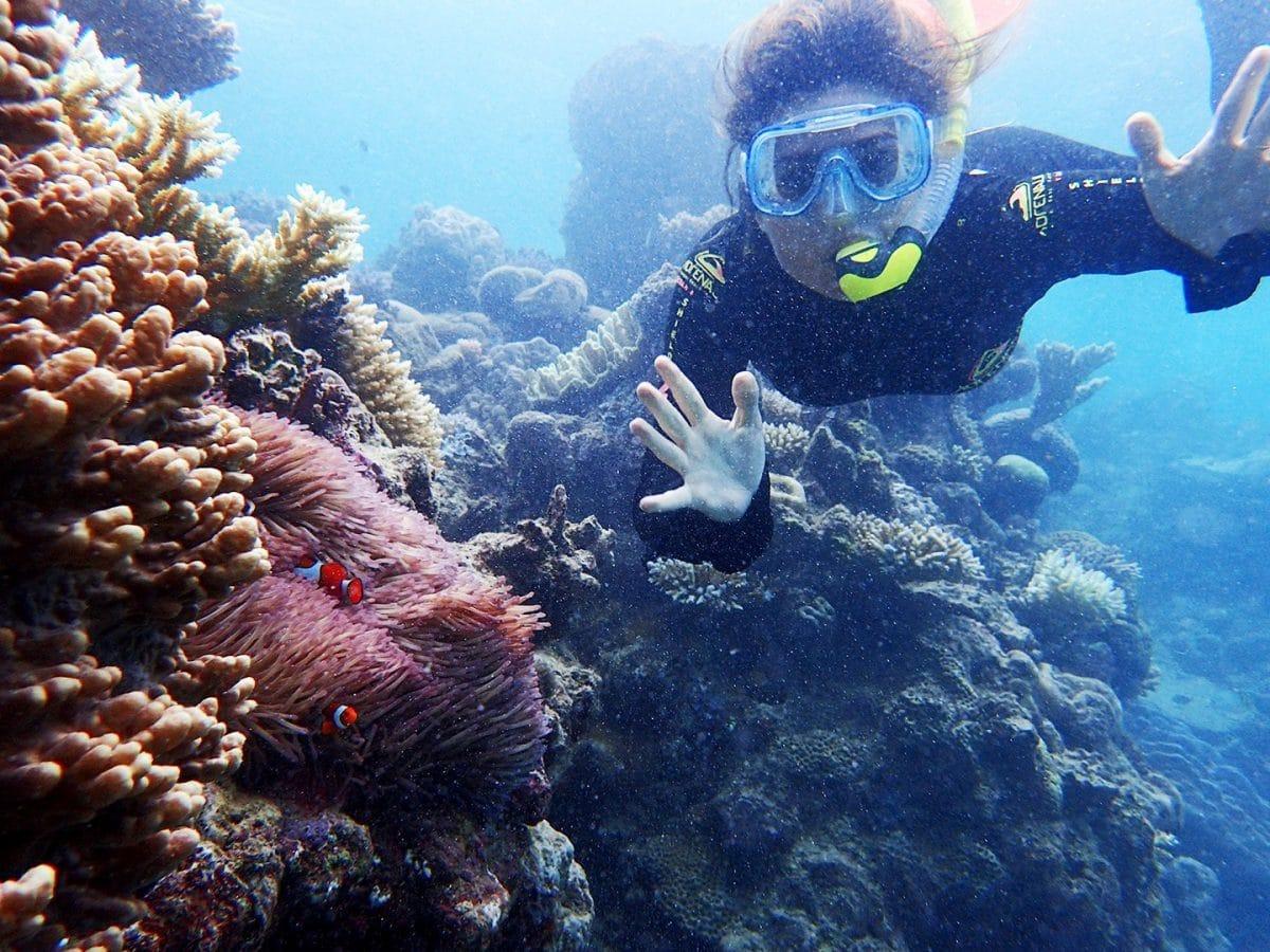 Gran Barrera de Coral, viajar a Australia 15 días
