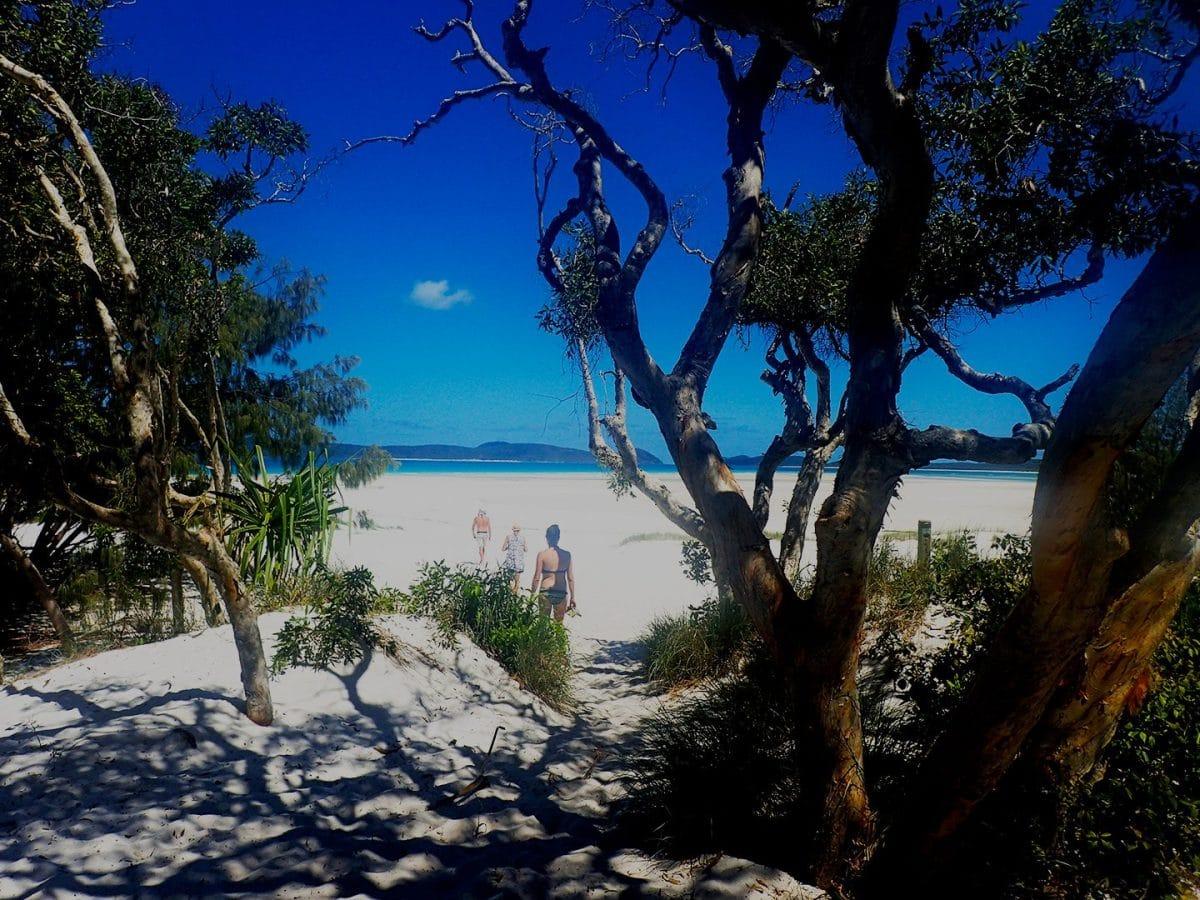 Whitehaven Beach Queensland Australia track