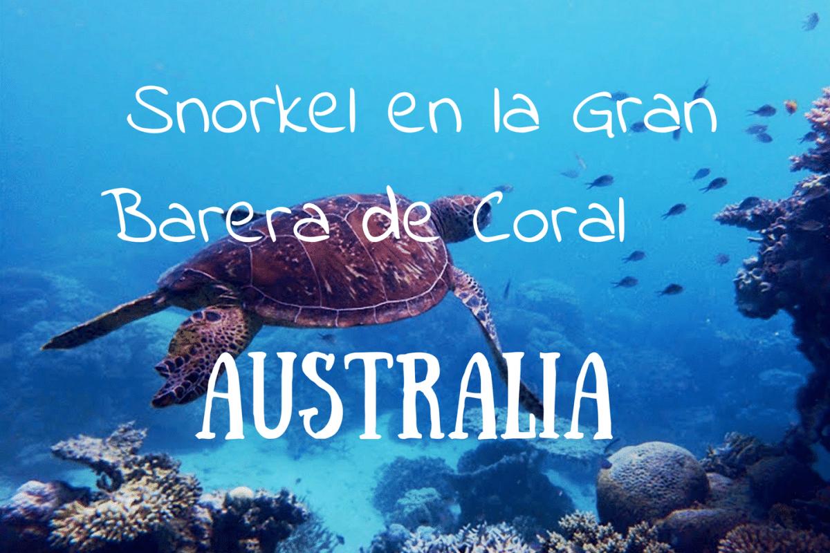 norkel en la Gran Barrera de Coral de Australia Portada