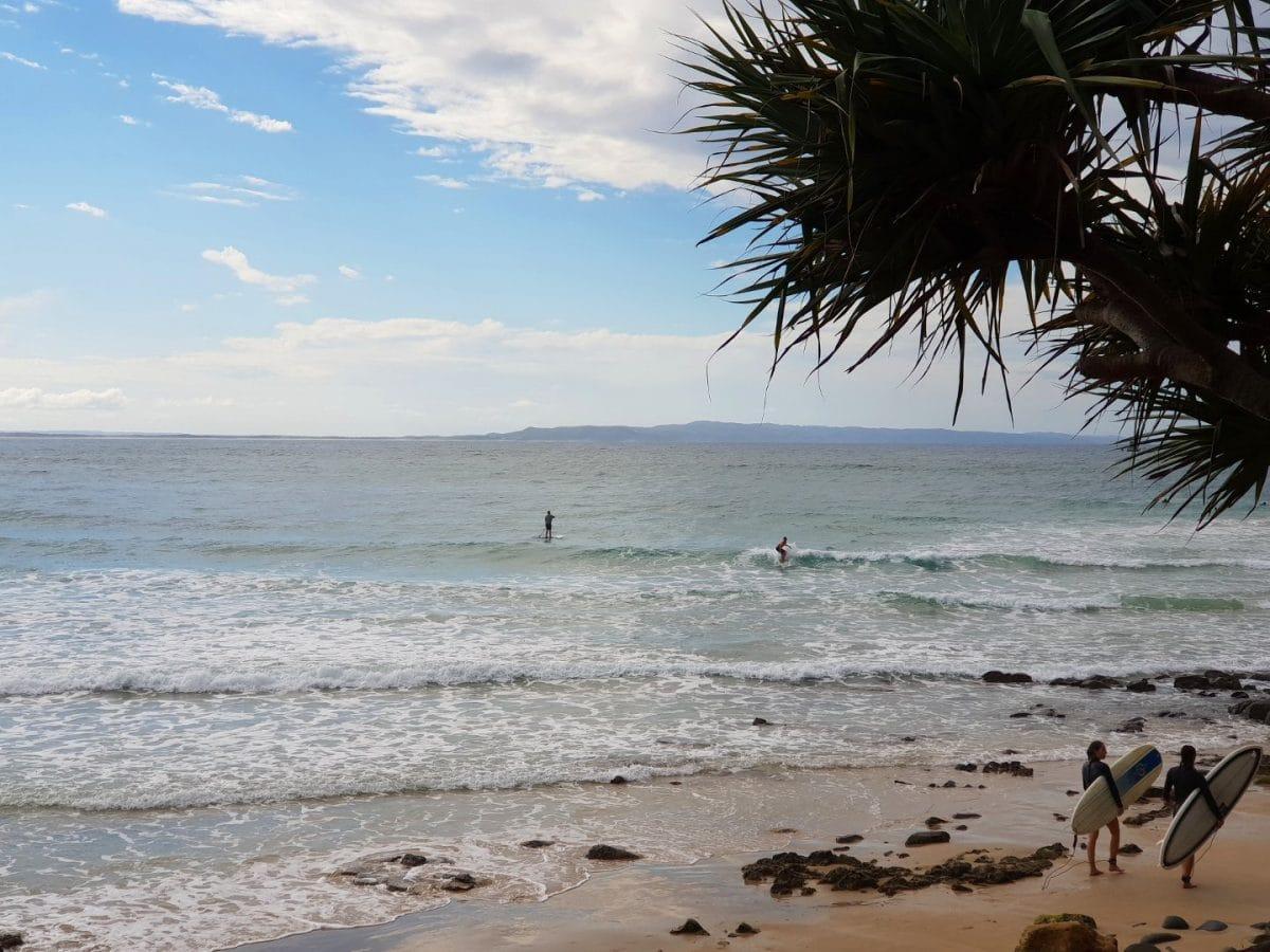 surfear en noosa heads Australia