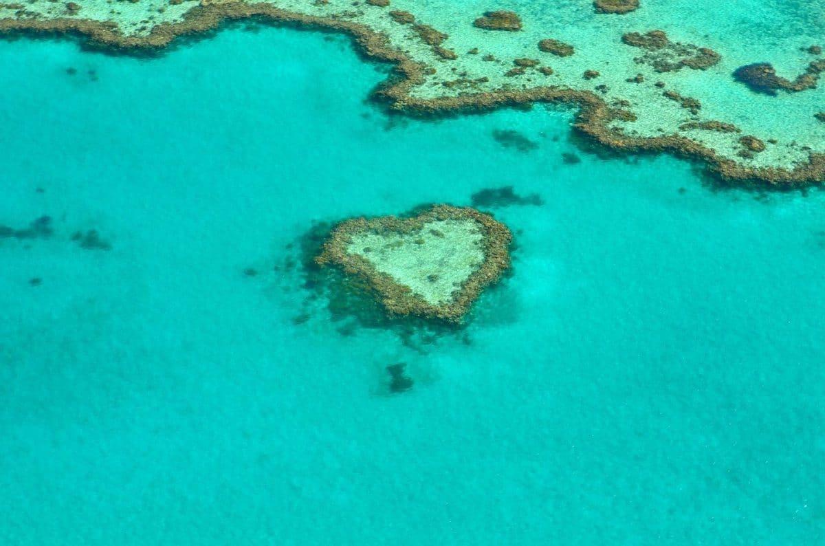 sobrevolar gran barrera de coral en avioneta