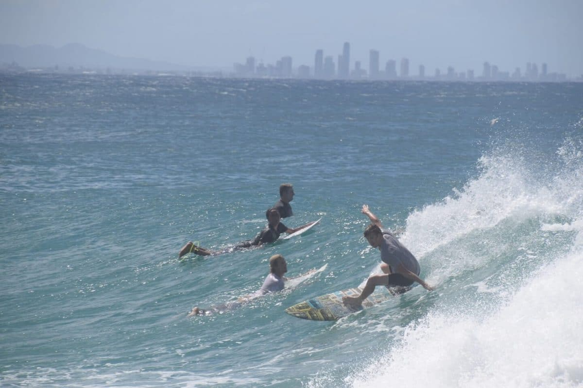 Snnaper rocks Gold Coast