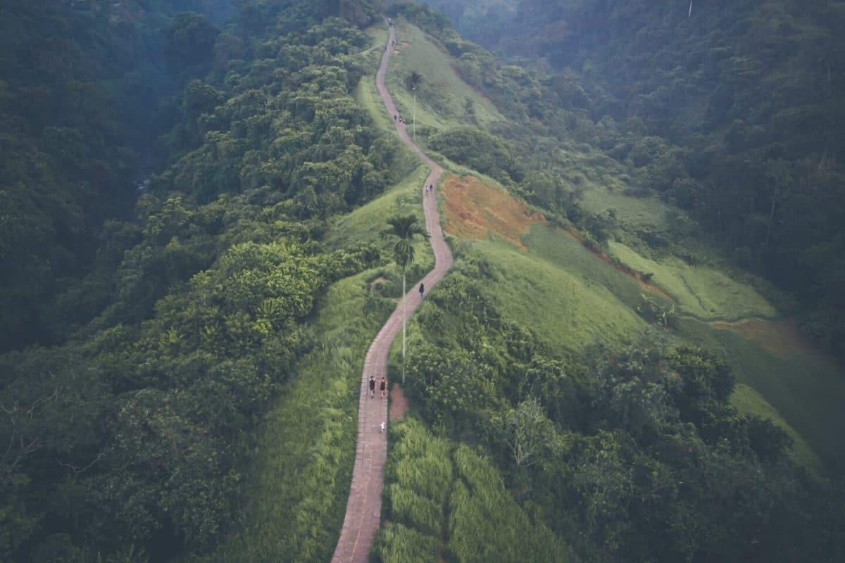 Campuhan Ridge Walk 10 días en Bali, Indonesia