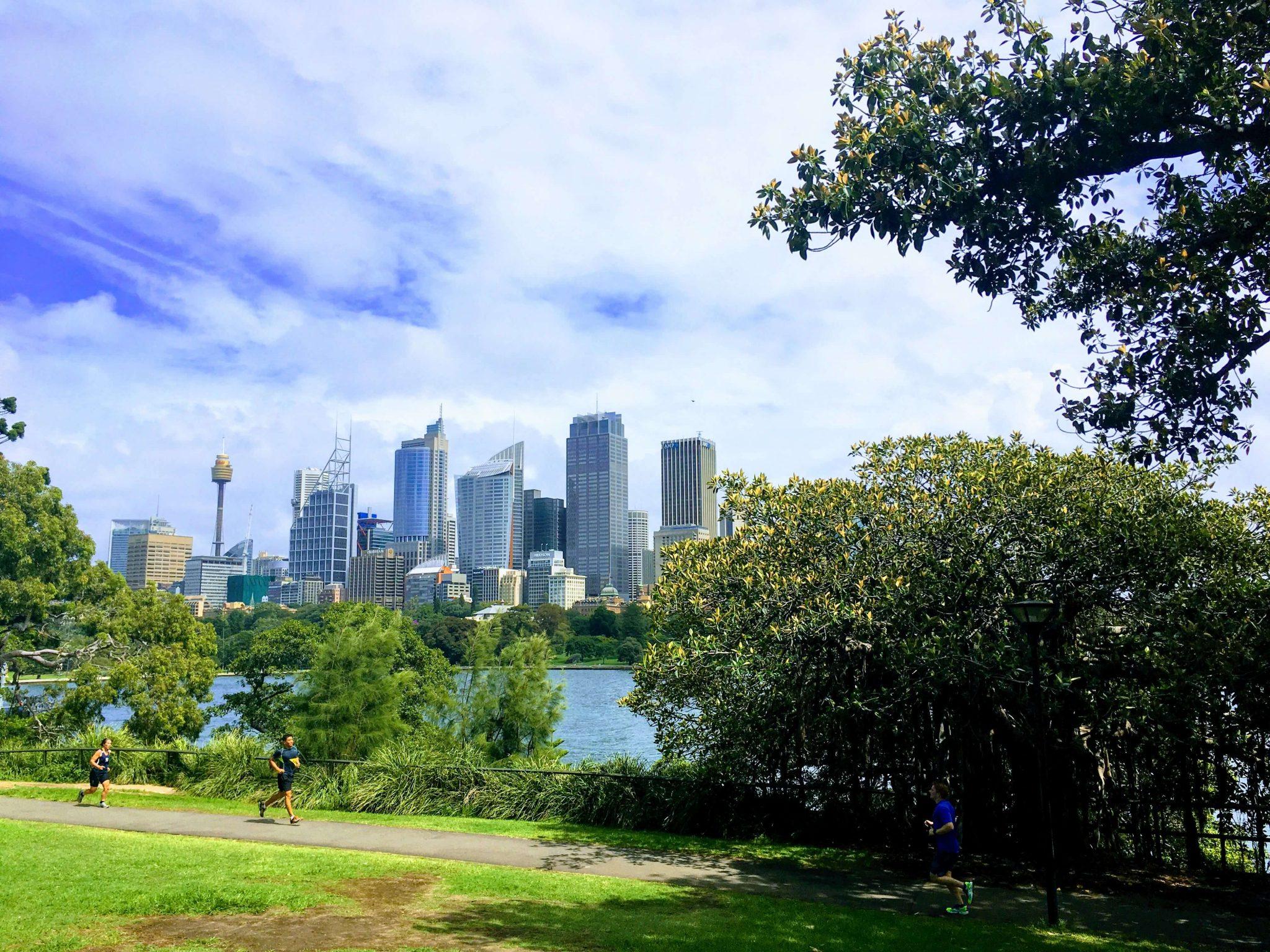 Que ver en Sydney Royal Botanic Garden