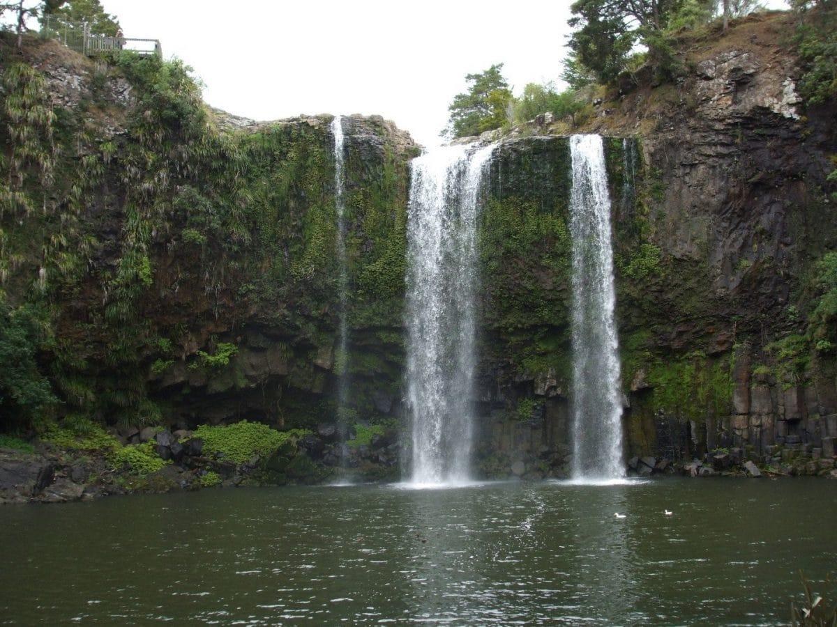 Whangarei Fall Isla norte de Nueva Zelanda