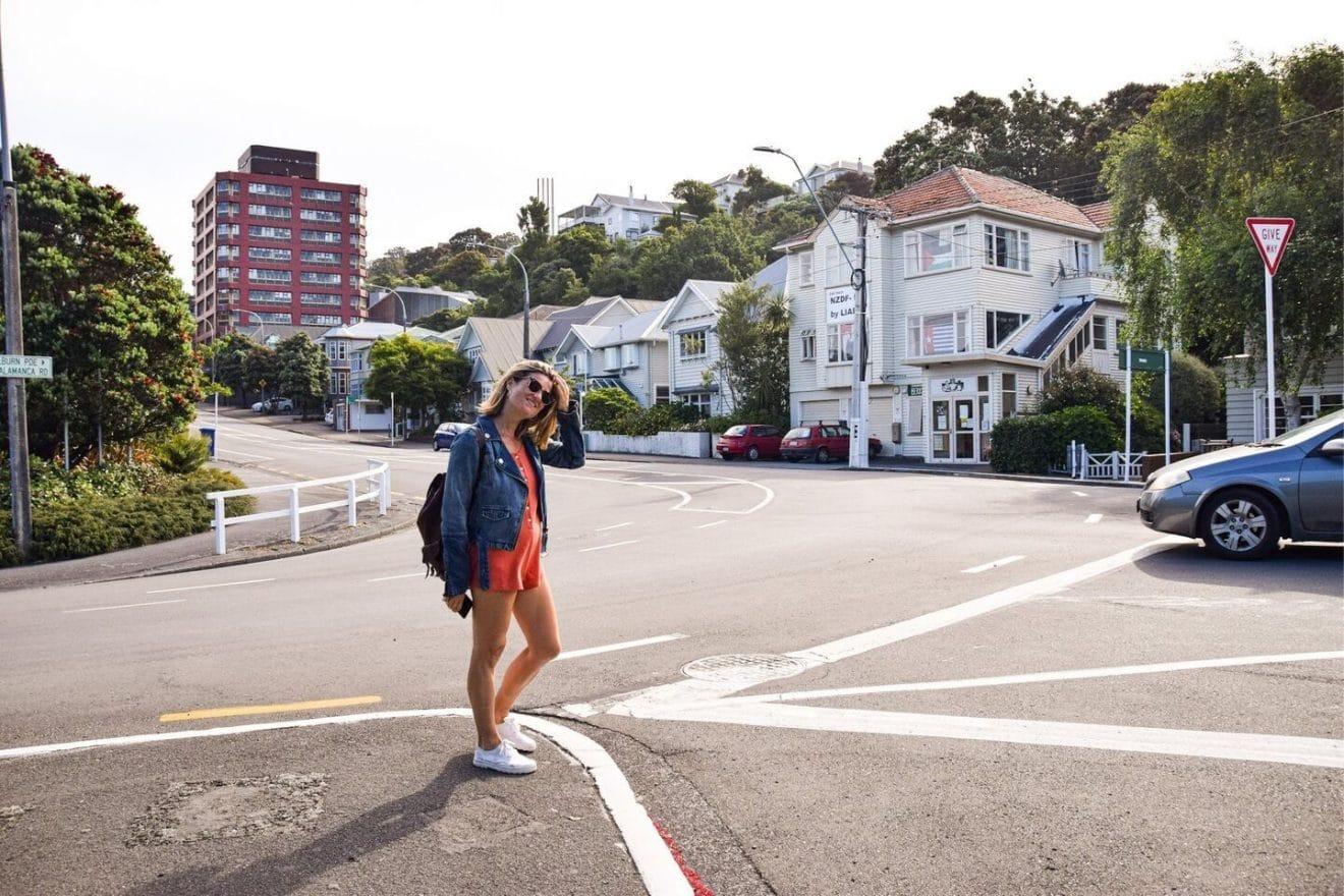 Wellington Isla Norte Nueva Zelanda