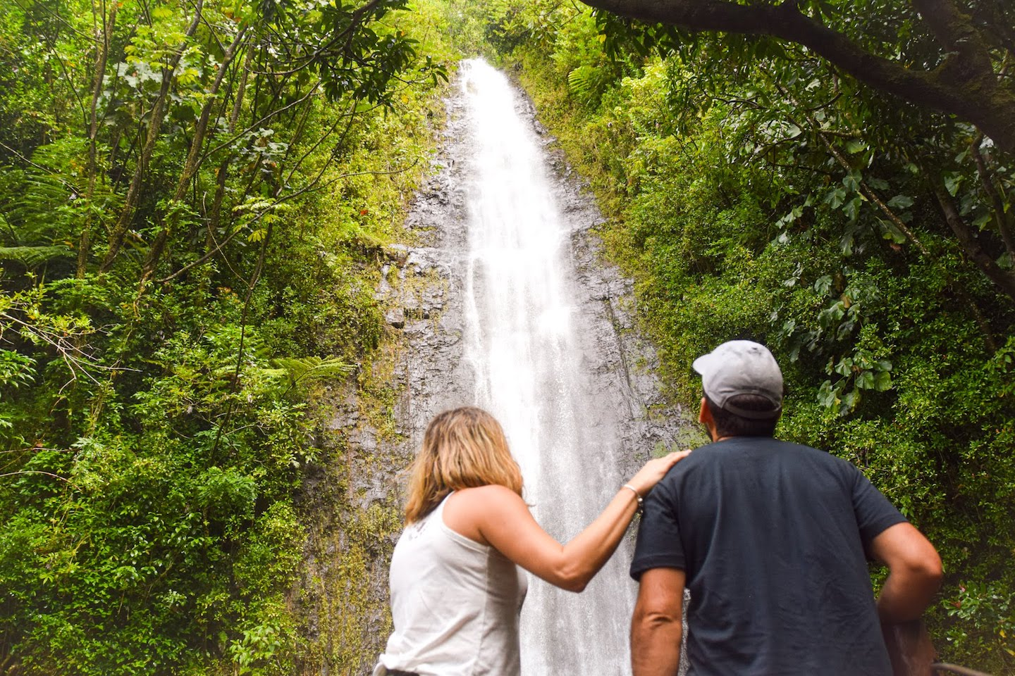 Manoa Falls Oahu Hawaii