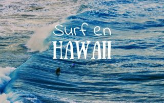 Surf en Hawaii Donde