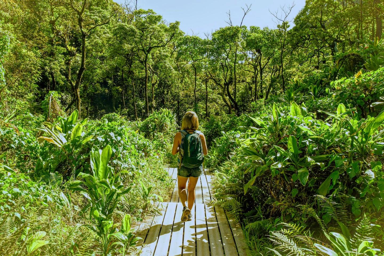 Pipiwai Trail que ver en Maui-Hawaii