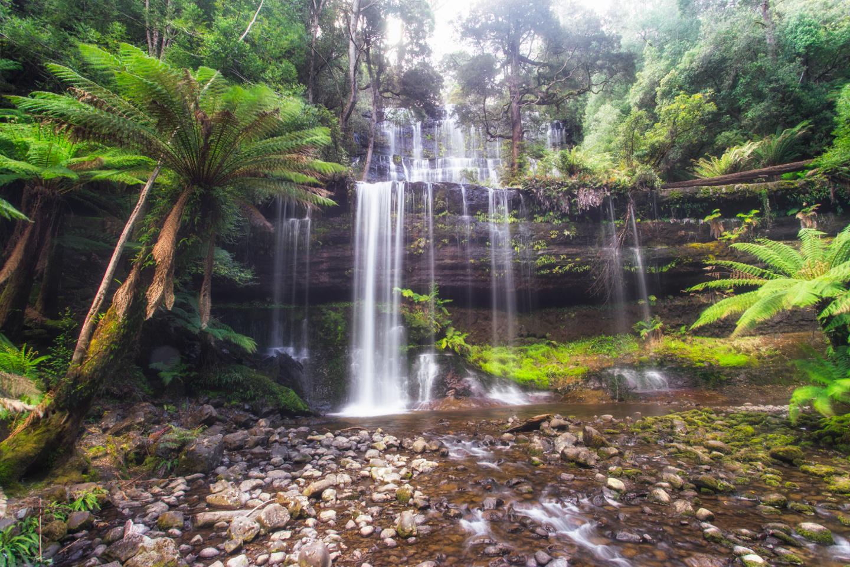 Parque Nacional Mount Field Australia